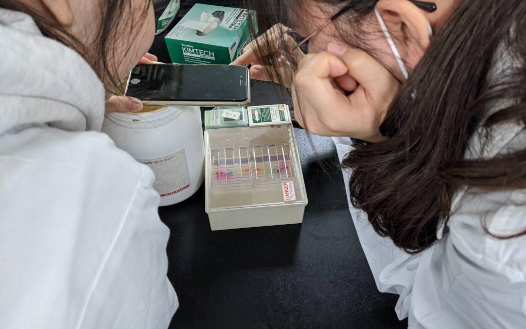 經驗分享:清華大學科學人才培育計畫(生命科學組)